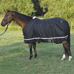 Classic Equine Nylon Sheet Best Price