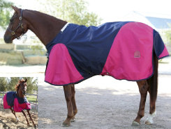 EOUS Banbridge Lightweight Turnout Blanket Best Price