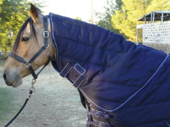 EOUS Heavyweight Stable Rug Hood Best Price