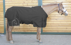 EOUS Phlegon Heavy Weight Turnout Horse Blanket Best Price