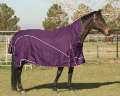 EOUS Madrid Midweight Turnout Blanket Best Price