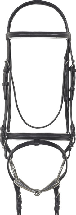 Camelot Lined Event Bridle with Flash (no reins)