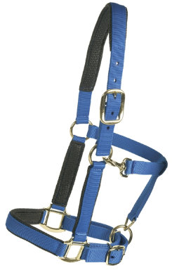 Equi-Star Super Padded Comfort Best Price