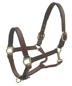 Ovation Triple Stitch Padded Halter Best Price