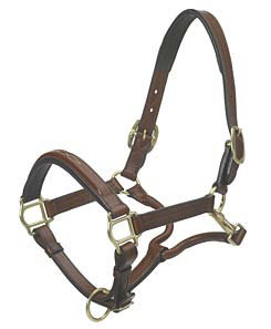 Ovation Wide Square Raised Padded Halter Best Price