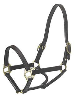 Ovation Double Stitch Sale Halter Best Price