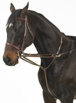 Camelot German Martingale Rein Set Best Price