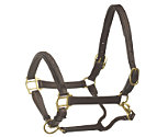Ovation Wide Square Raised Padded Halter