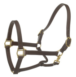 Ovation Triple Stitch Fixed Chin Show Halter Best Price