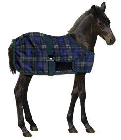 Centaur 200g Foal Turnout Blanket Best Price