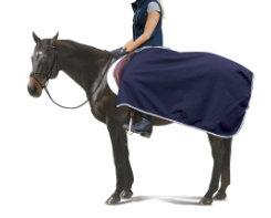 Centaur Wool Exercise Sheet Best Price