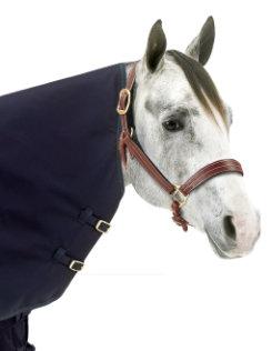 Centaur 1200D Horse Neck Rug Best Price
