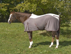 Centaur Got Flies? Wicked Fly Sheet Best Price