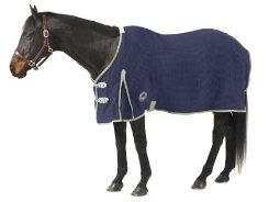 Centaur Wickster Anti Sweat Sheet Best Price