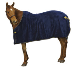 Centaur Super Plush Sheet Best Price