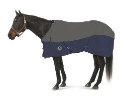 Centaur EZ-Care 2-Tone Stable Sheet Best Price