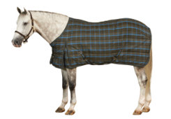 ER Centaur 200g SuperStable Blanket Best Price