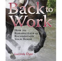 Back to Work By Lucinda Dyer Best Price