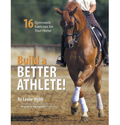 Building a Better Athlete-16 Exercises by Leslie Webb