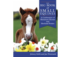 The Big Book of Small Equines Best Price