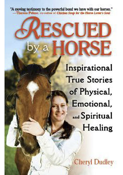 Rescued By A Horse by Cheryl Dudley Best Price