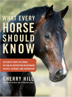 What Every Horse Should Know by Cheryl Hill Best Price