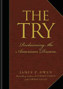 The Try by James P. Owen Best Price