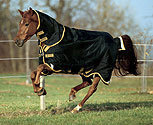 Rambo by Horseware Supreme Medium Weight Turnout Horse Blanket