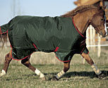Rambo Original Turnout Medium Weight Horse Blanket