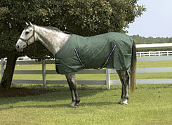 Rambo by Horseware Cotton Stable Sheet Best Price