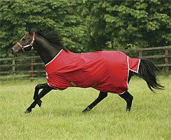 Amigo by Horseware 600D Lightweight Turnout Horse Blanket Best Price