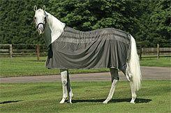 Amigo by Horseware Skrim Cooler Best Price