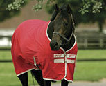 Amigo by Horseware Summer Horse Sheet (2009 Colors)