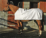 Horseware Waterproof Horse Fly Sheet Liner