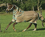 Amigo by Horseware Horse Fly Sheet