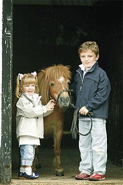Horseware Kids Lexington Jacket Best Price
