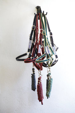 Amigo by Horseware Halter with Lead Rope