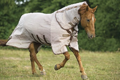 Rambo by Horseware Protector Horse Fly Sheet