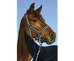 Amigo by Horseware Halter with Leadrope (Classic Navy)