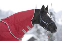 Amigo by Horseware 1200D Hood Best Price