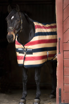 Rambo by Horseware Newmarket Stable Sheet 2009