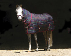 Amigo by Horseware Pony Medium Stable Blanket Best Price