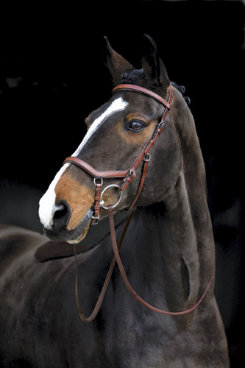 Rambo by Horseware Micklem Competition Bridle with Reins