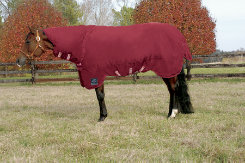 Rambo by Horseware QH Heavy Weight Turnout Horse Blanket Best Price