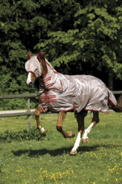 Horseware Amigo Mio Fly Sheet Best Price