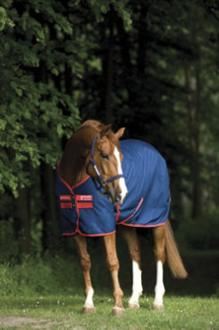 Horseware Amigo Mio Stable Sheet