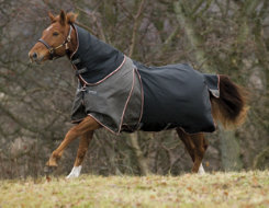 Rambo by Horseware Optimo Turnout Blanket System Best Price