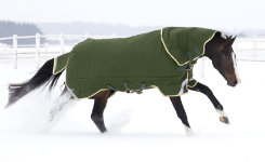 Rambo by Horseware Original Heavy Weight Turnout Horse Blanket Best Price