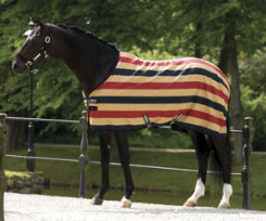 Rambo by Horseware Newmarket Stable Sheet Best Price