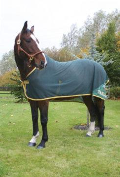 Horseware Team Ireland Net Cooler Best Price